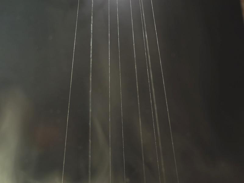天蚕の生糸