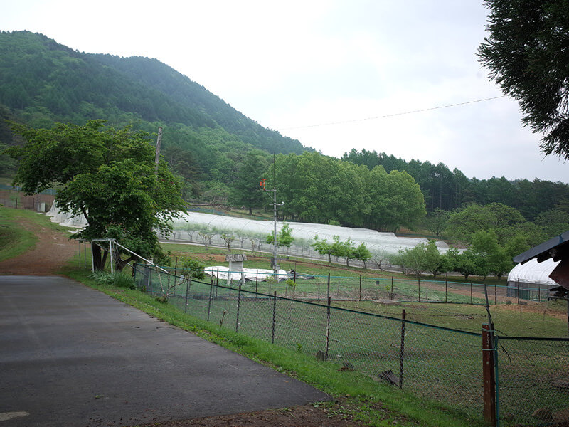 長野県の信州大学大室農場に見学に行きました!
